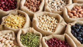 alimentazione cibi raccomandati legumi
