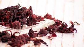 cistite rimedi naturali hibiscus sabdariffa