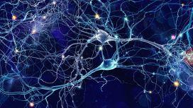 Cura Alzheimer con i neuroni