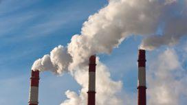 pesce inquinamento atmosferico