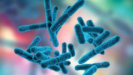 probiotici e diarrea