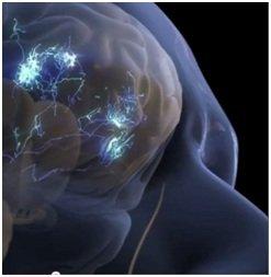 Cervello e sinapsi