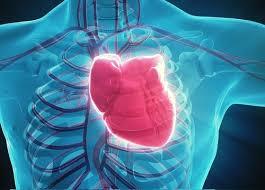 evento cardiaco
