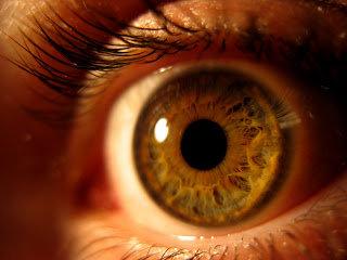 I 10 comandamenti per la salute degli occhi