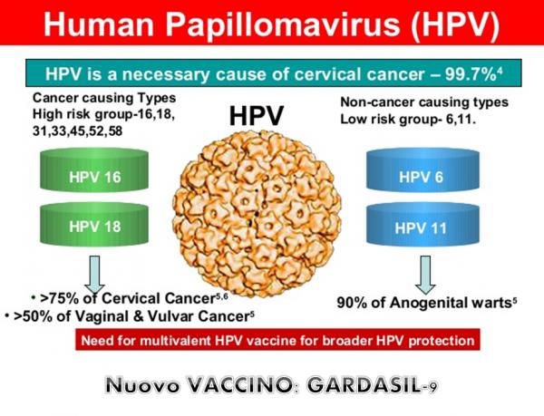 Vaccino hpv