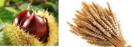 castagne e grano