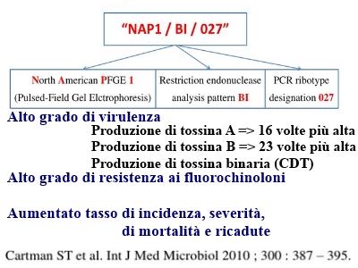 francescoquatraro_CDI-02