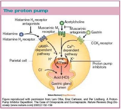Pompa Protonica