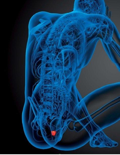 Disfunzione erettile e problemi cardiaci: i farmaci che risolvono - ambersun.lt