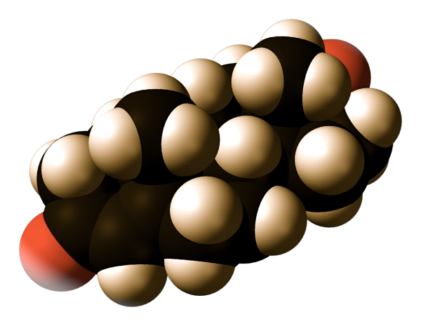 giovanniberetta_Testosterone-from-xtal-3D-vdW