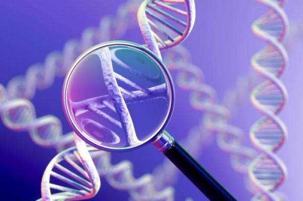 Cancro alla prostata: una speranza dalla genetica