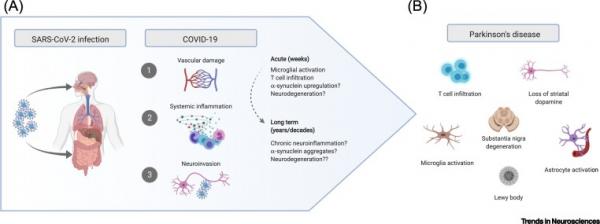 Covid e Parkinson