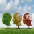 L'invecchiamento secondo una prospettiva di sviluppo