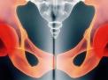 La neurofisiologia del pavimento pelvico