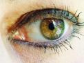 L'apparato di protezione dell'occhio